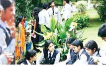 Labour India Gurukulam JuniorCollege and Public School, Kottayam