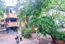 Mahatma Gandhi InternationalSchool, Ahmedabad