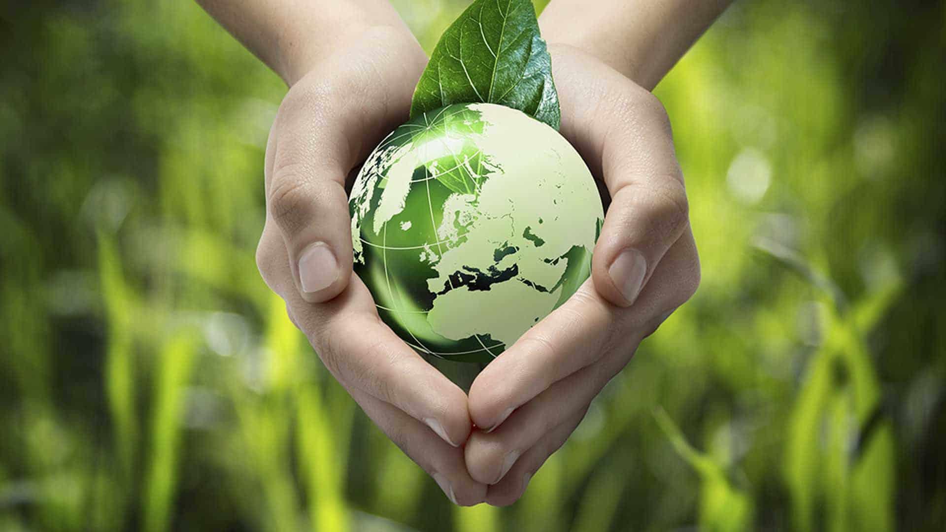 Schools Key to Develop Eco-Friendly & Safe World