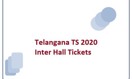 Telangana TS 2020 Inter Hall Tickets