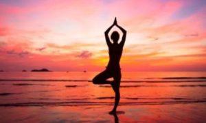 NCERT Yoga