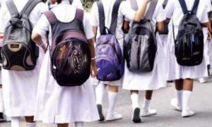 UP primary schools